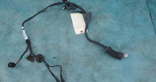Bentley Flying Spur Right Front Door Wire Harness